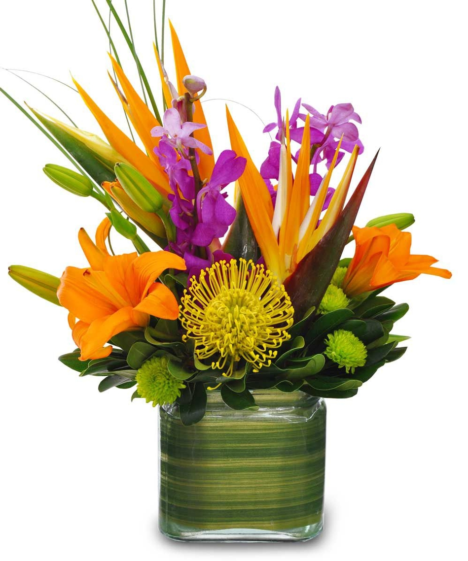 The carmel florist which flower arrangement appeals to you tropical flowerfoliage vased arrangement tropical compact design in glass cube vase mightylinksfo